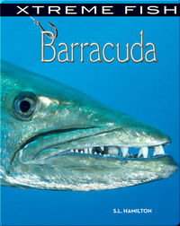 Xtreme Fish: Barracuda