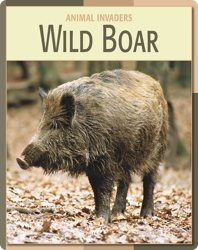 Animal Invaders: Wild Boar