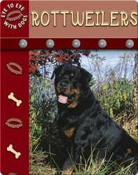 Eye To Eye With Dogs: Rottweilers