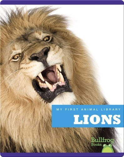 My First Animal Library: Lions