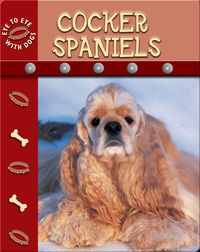 Eye To Eye With Dogs: Cocker Spaniels