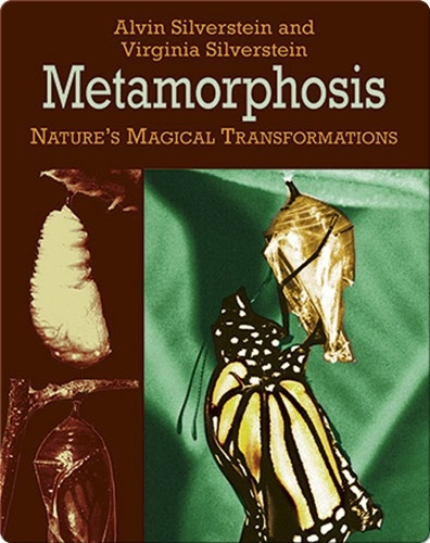 Metamorphosis: Nature's Magical Transformations