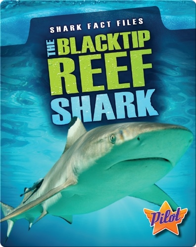 Shark Fact Files: The Blacktip Reef Shark