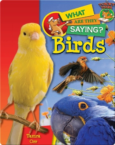 Birds: What Are They Saying?