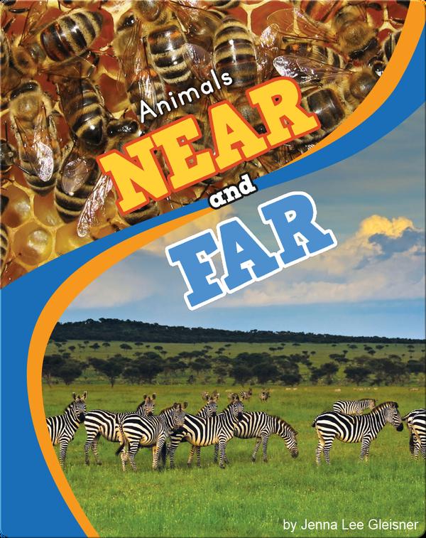 Animals Near and Far