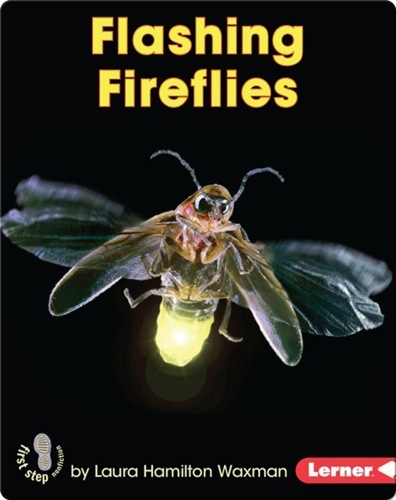 Flashing Fireflies