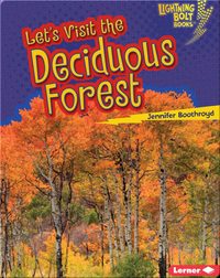 Let's Visit the Deciduous Forest
