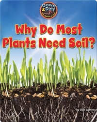 Why Do Most Plants Need Soil?