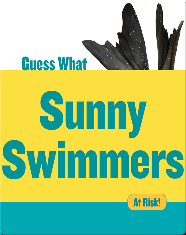 Sunny Swimmers