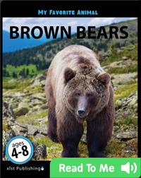 My Favorite Animal: Brown Bears