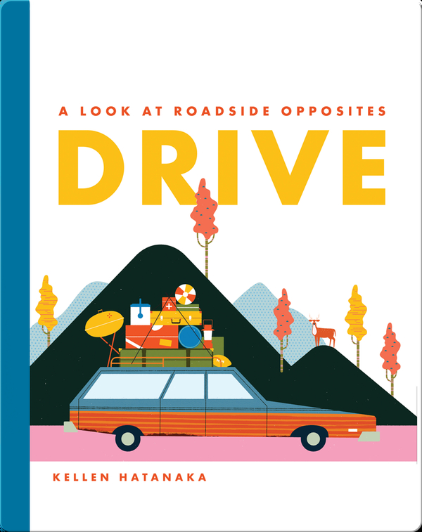 Drive: A Look at Roadside Opposites