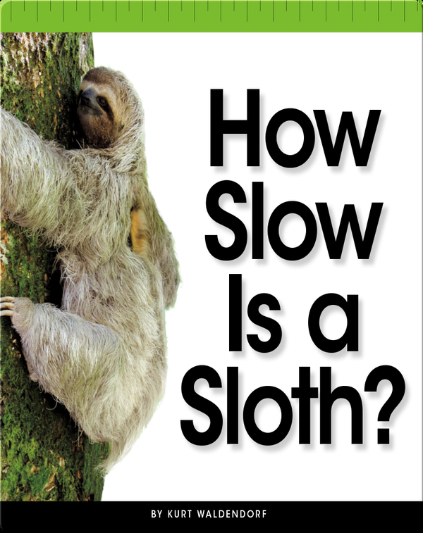 How Slow Is a Sloth?