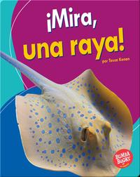 ¡Mira, una raya! (Look, a Ray!)