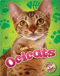 Cool Cats: Ocicats