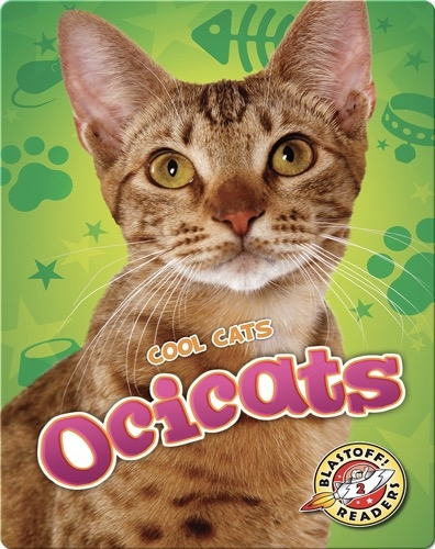 Cool Cats: Ocicats