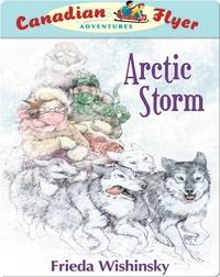 Arctic Storm (Canadian Flyer Adventures #16)