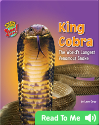 King Cobra: The World's Longest Venomous Snake