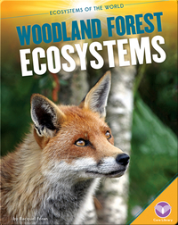 Woodland Forest Ecosystems