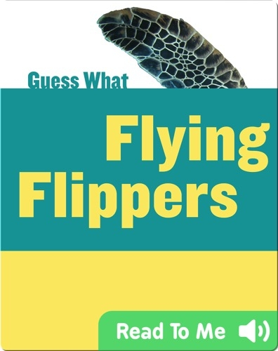 Flying Flippers