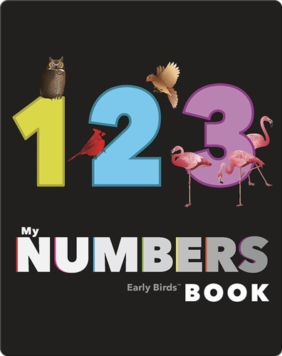 My Numbers Book (Early Birds Learning)