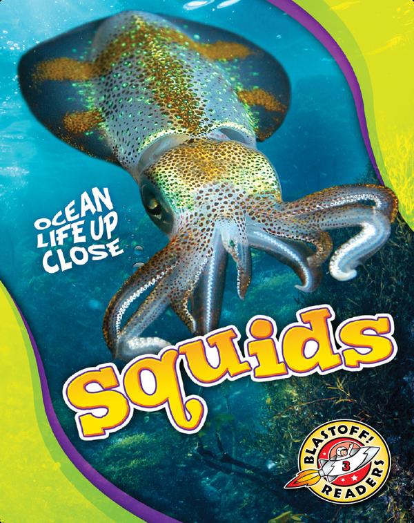 Ocean Life Up Close: Squids