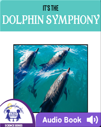 It's The Dolphin Symphony