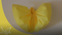 Origami:Napkin Butterfly