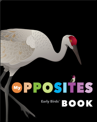 My Opposites Book (Early Birds Learning)