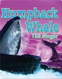 Humpback Whale: The Singer