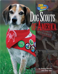 Dog Scouts of America