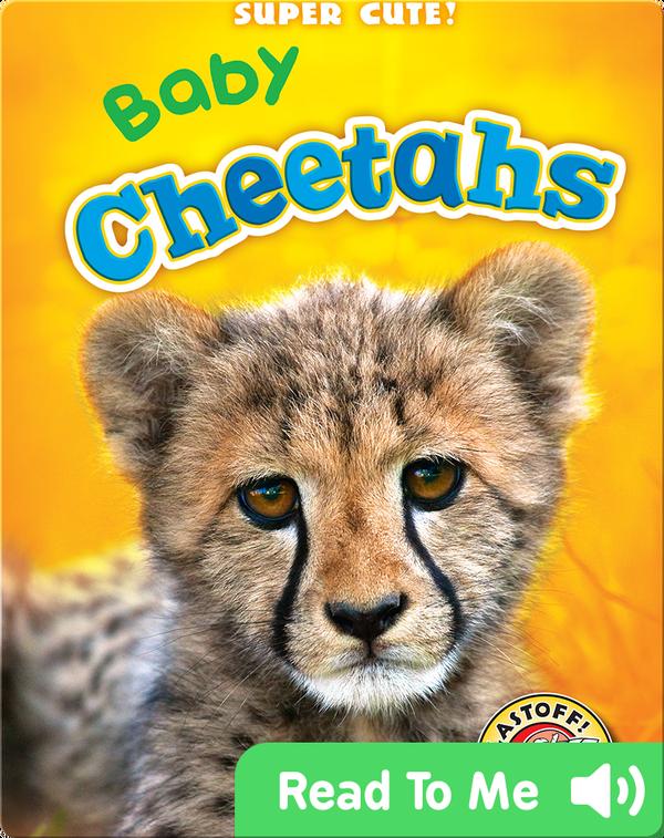 Super Cute! Baby Cheetahs
