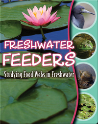 Freshwater Feeders: Studying Food Webs In Freshwater