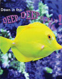 Down In The Deep, Deep, Ocean!