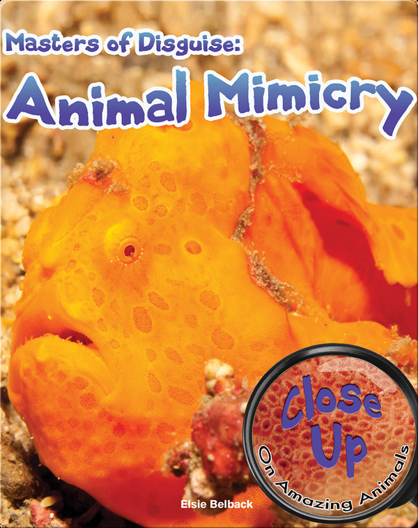 Masters of Disguise: Animal Mimicry