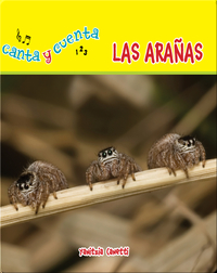 Las arañas
