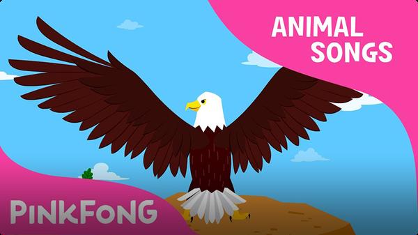 Powerful Bald Eagle (Animal Songs)