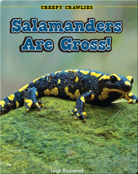 Salamanders Are Gross!