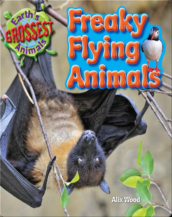 Freaky Flying Animals