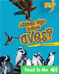 ¿Sabes algo sobre aves? (Do You Know about Birds?)