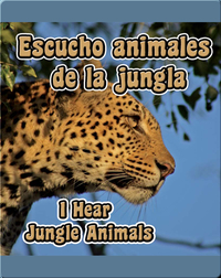 Escucho Animales De La Jungla  (I Hear Jungle Animals)