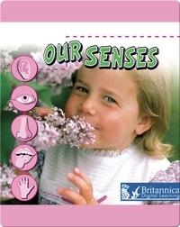 Our Senses
