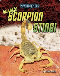 Deadly Scorpion Sting!