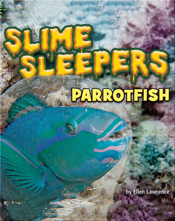Slime Sleepers: Parrotfish