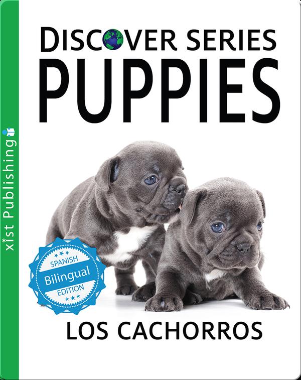 Puppies / Los cachorros