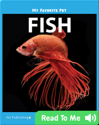 My Favorite Pet: Fish