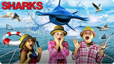 Learn About Sharks for Kids | Fun Facts About Hammerhead Sharks!