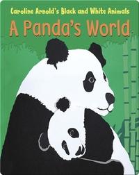 A Panda's World