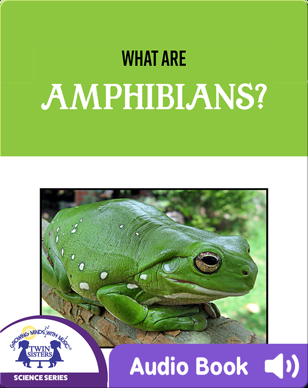 What Are Amphibians?