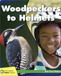 Woodpeckers to Helmets