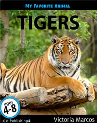 My Favorite Animal: Tigers